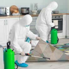 sanitizacion y limpieza B2C