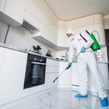 sanitizacion y limpieza p